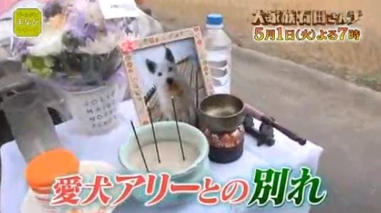 f:id:karuhaito:20180429232421j:plain